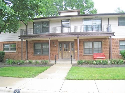 234 Washington Unit C, Elk Grove Village, IL 60007