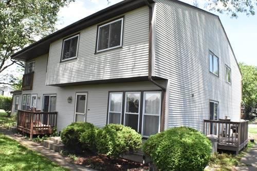 7253 W Hickory Creek Unit 7253, Frankfort, IL 60423