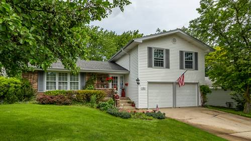1120 Rosedale, Hoffman Estates, IL 60169