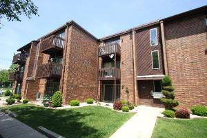 1725 Greenwood Unit 1B, Glenview, IL 60026