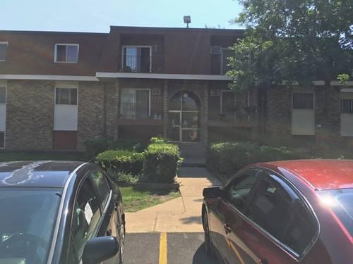 1185 Meadow Unit 211, Hoffman Estates, IL 60194