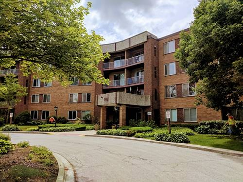 909 E Kenilworth Unit 225, Palatine, IL 60074