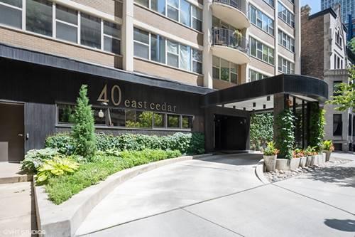 40 E Cedar Unit 19A, Chicago, IL 60611 Gold Coast