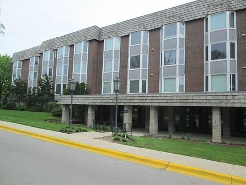 201 Thames Unit 2D, Park Ridge, IL 60068