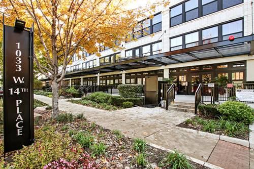 1033 W 14th Unit 217, Chicago, IL 60608 University Village / Little Italy