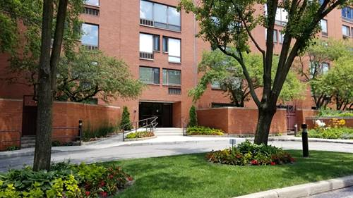 1143 S Plymouth Unit 201, Chicago, IL 60605 South Loop