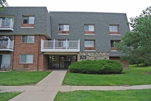 920 Ridge Unit 113, Elk Grove Village, IL 60007