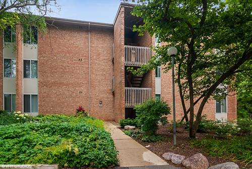 6018 E Lake Unit 2D, Lisle, IL 60532