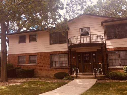223 Washington Unit A, Elk Grove Village, IL 60007