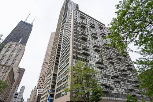 1000 N Lake Shore Unit 1603, Chicago, IL 60611 Gold Coast