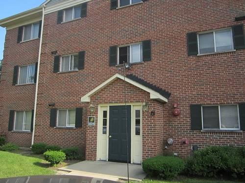 1534 N River West Unit 1B, Mount Prospect, IL 60056