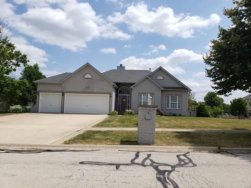 13219 Ione, Plainfield, IL 60585