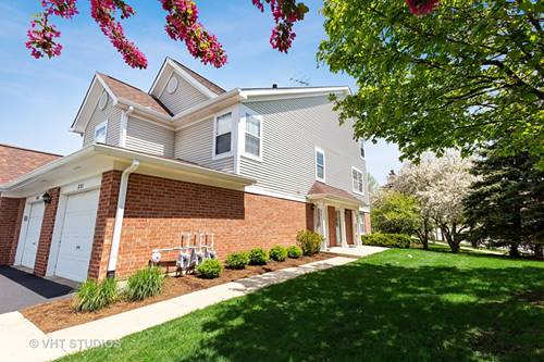 221 Mansfield Unit 221, Roselle, IL 60172