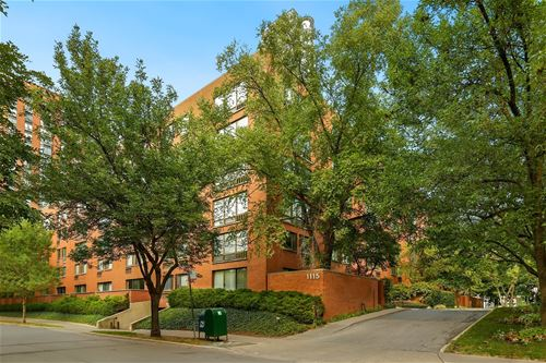 1115 S Plymouth Unit 105, Chicago, IL 60605