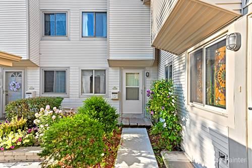 1024 Casa Unit 1, Schaumburg, IL 60173