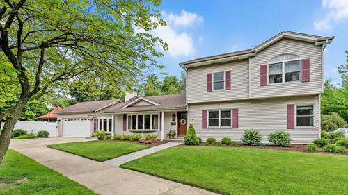 385 W 2nd, Elmhurst, IL 60126