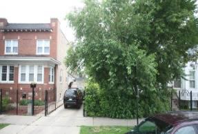1339 N Springfield, Chicago, IL 60651 Humboldt Park
