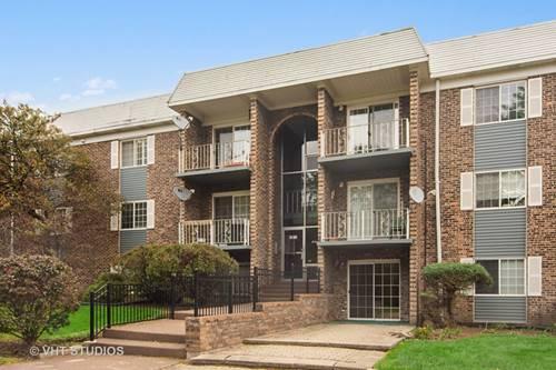 1533 N Windsor Unit 316, Arlington Heights, IL 60004
