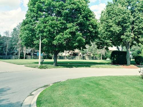 Lot 8 Grays, Oswego, IL 60543