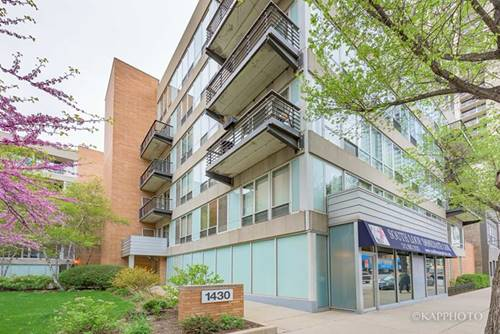 1430 S Michigan Unit 407, Chicago, IL 60605 South Loop