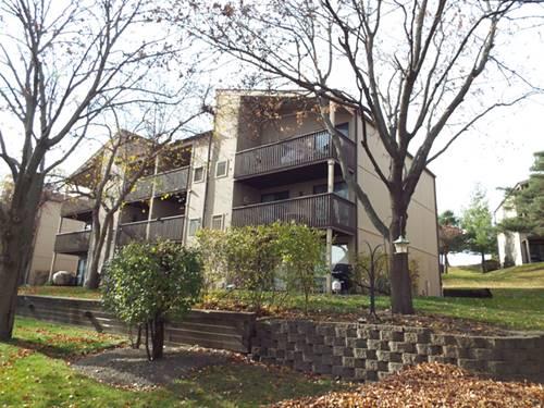 55 Vail Colony Unit 8, Fox Lake, IL 60020