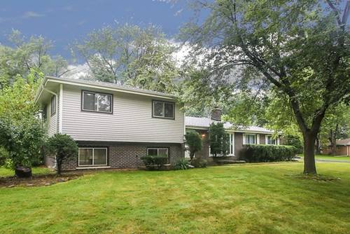 198 Patricia, Prospect Heights, IL 60070