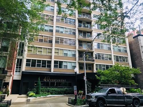 40 E Cedar Unit 11C, Chicago, IL 60611 Gold Coast