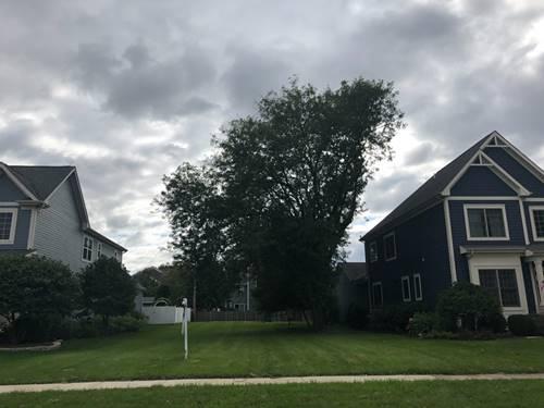 765 E Sunnyside, Libertyville, IL 60048