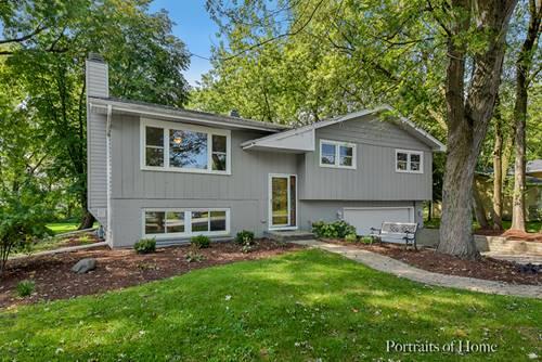 10220 Sunridge, Naperville, IL 60564