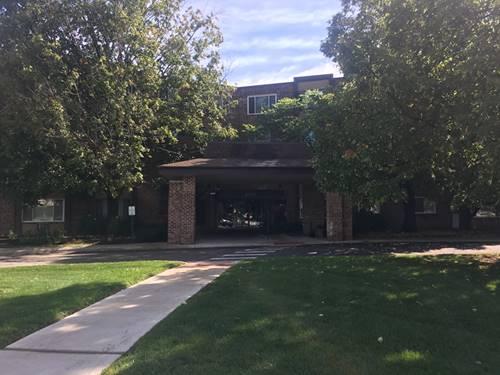 1375 Rebecca Unit 408, Hoffman Estates, IL 60169