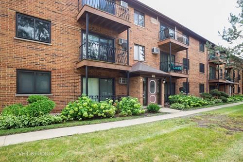 924 W Irving Park Unit 106, Bensenville, IL 60106