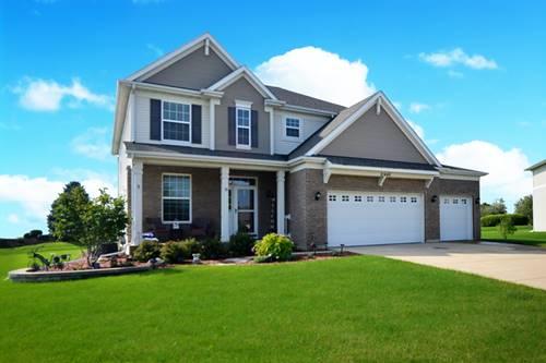 21446 Wynstone, Shorewood, IL 60404