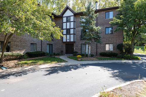 48 Harbor Unit 312, Naperville, IL 60565