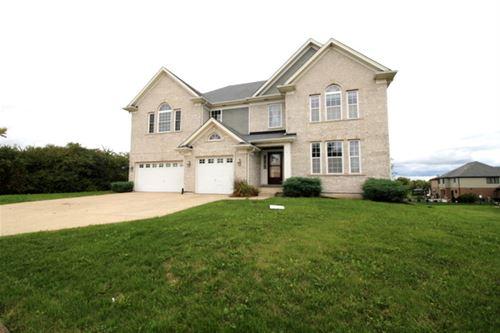 20122 Laporte Meadows, Frankfort, IL 60423