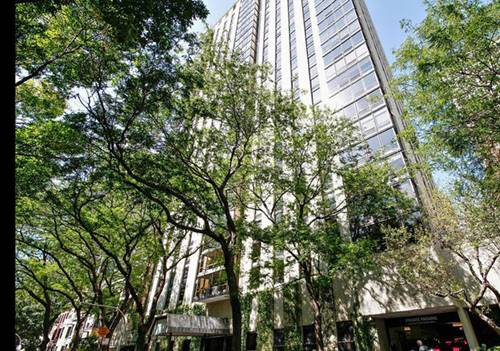 100 E Bellevue Unit 18F, Chicago, IL 60611 Gold Coast