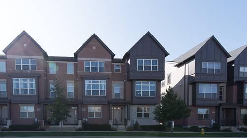 263 Aspen Pointe, Vernon Hills, IL 60061
