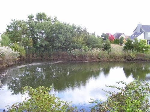 1366 Lakeside, Morris, IL 60450