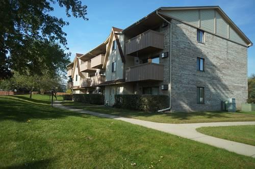 19 Cedar Unit 11, Vernon Hills, IL 60061