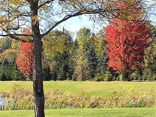 Lot 19 Deer Pond, St. Charles, IL 60174