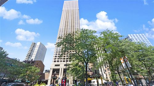 1030 N State Unit 34LM, Chicago, IL 60610 Near North