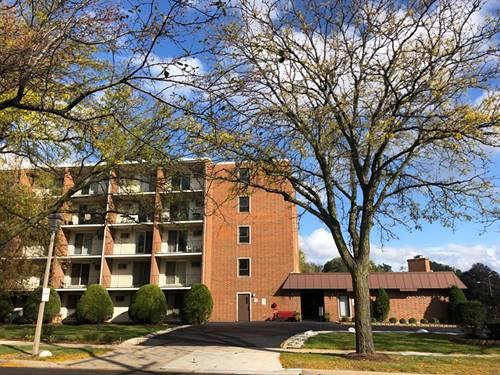 255 S West Unit 206, Elmhurst, IL 60126