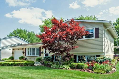 807 W Burr Oak, Arlington Heights, IL 60004