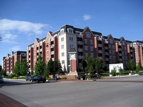 4833 N Olcott Unit 213, Harwood Heights, IL 60706