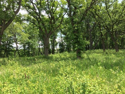1201 Ridgemoor, Woodstock, IL 60098