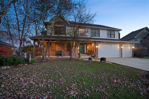 26347 W Old Kerry Grove, Channahon, IL 60410