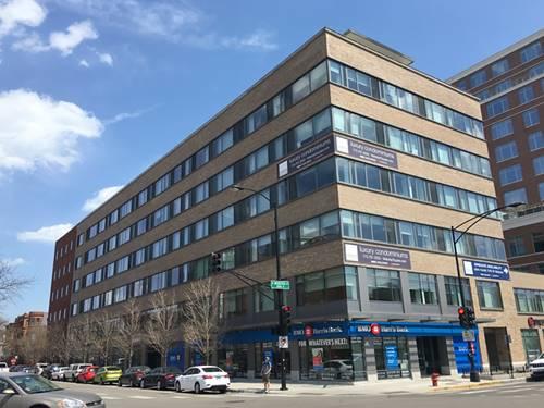 558 W Webster Unit 612, Chicago, IL 60614 Lincoln Park