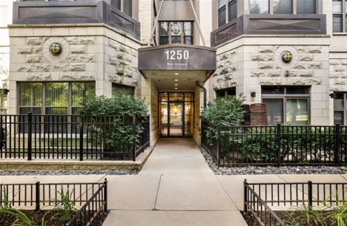 1250 S Indiana Unit 915, Chicago, IL 60605 South Loop