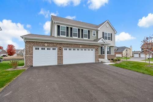 13539 Arborview, Plainfield, IL 60585
