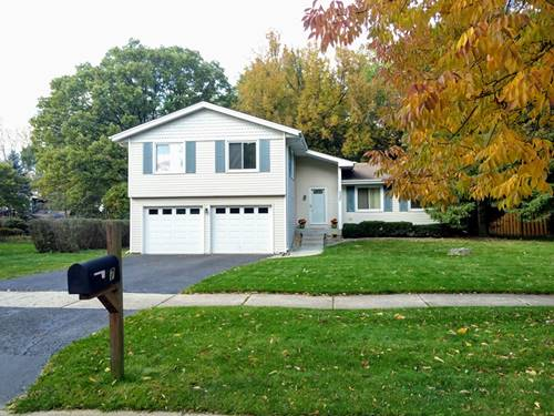 337 Carriage Hill, Naperville, IL 60565