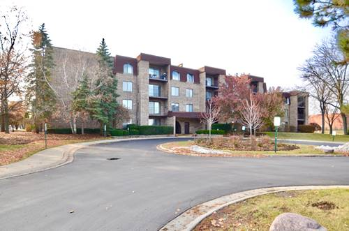 2050 Valencia Unit 216C, Northbrook, IL 60062
